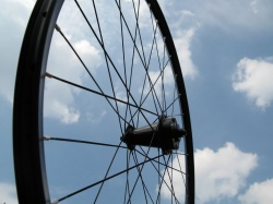 Full-carbon MTB rims by M5 now available!
